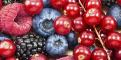 Ягоды — лучшая пища при диабете