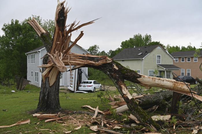 ураган, дерево, Миссисипи,, дом