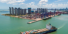 Глобальное судоходство приостановилось из-за вспышки COVID-19 в южной провинции Китая