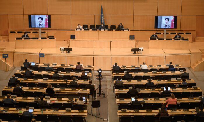 Правозащитница предупредила, что Пекин пытается подорвать систему прав человека в ООН