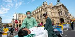 Эксперты ООН по правам человека «крайне встревожены» заявлениями о насильственном извлечении органов в Китае