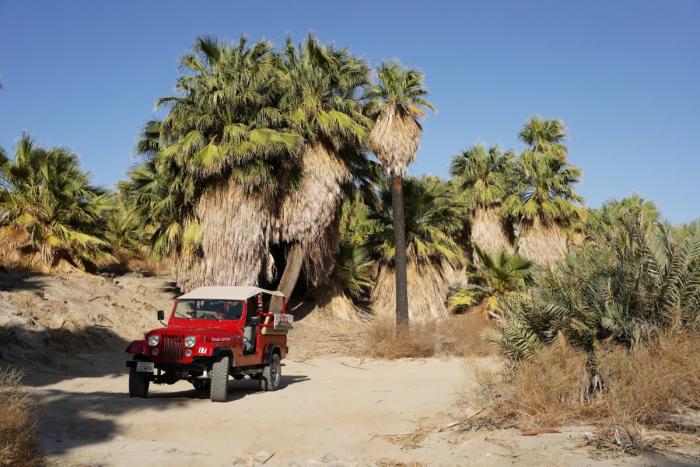 BD700979 1 1200x800 1 e1624166339903 - Очарование пустыни: выходные в Палм-Спрингс