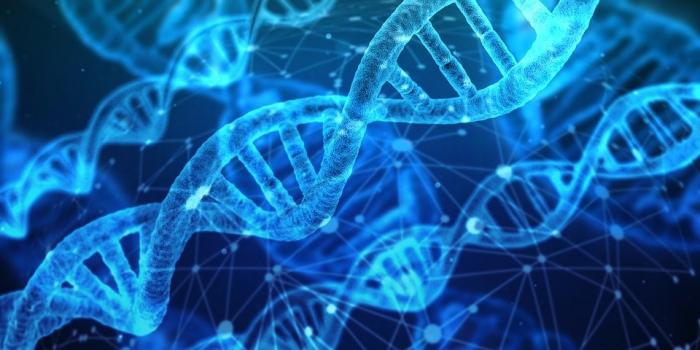 Попытки Китая собрать данные по геномике США пресекут новые законы