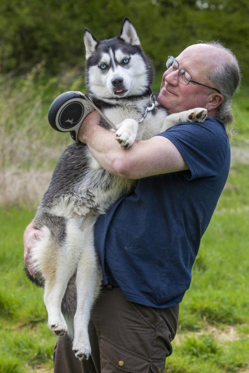 ET Siberian Husky 1 1200x1800 1 e1624720195906 - Несчастная собака или новая кухня? Супруги из Шотландии долго не думали…