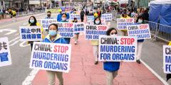 Техас принял резолюцию, осуждающую систематическое убийство в Китае узников совести ради их органов