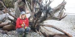 Как общаются деревья. В поисках древа-матери