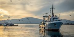 Япония требует у России отпустить задержанное судно