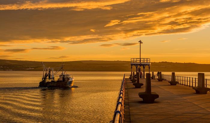 Россия отпустила японское судно после уплаты штрафов в 6 млн рублей