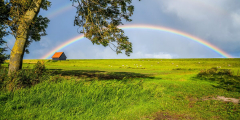 Как отпустить беспокойство и освободиться от навязчивых мыслей