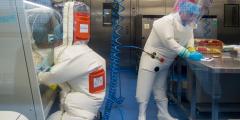 Эксперты указывают на «изобличающее» доказательство лабораторного происхождения вируса