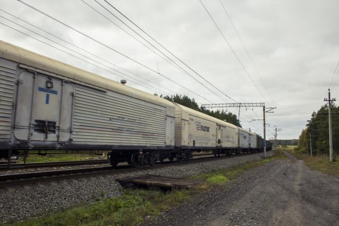 В Приамурье столкнулись два грузовых поезда. Погибли не менее четырёх человек (Видео)