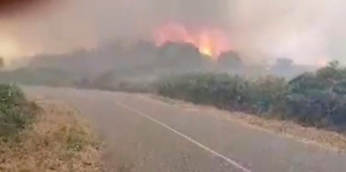 Южная Европа борется с лесными пожарами, пока северная очищается после наводнений