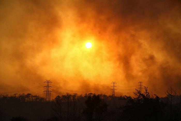 Лесные пожары на юге Турции: три человека погибли, более 100 эвакуированы
