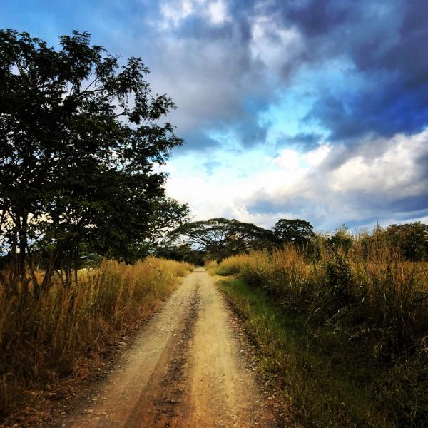 Дебри и просёлочные дороги: Коста-Рика в глубинке