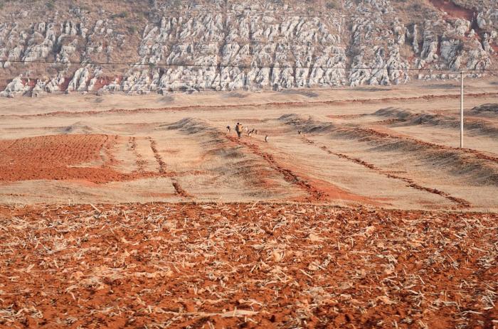 DesertFarm 139435836 1200x794 1 e1626342932112 - В Китае нехватка продовольствия. Под следствием — высокопоставленные чиновники