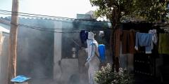 Индия сообщила о первой смерти человека от птичьего гриппа