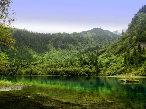 Путешествие по очаровательной «зелёной» планете