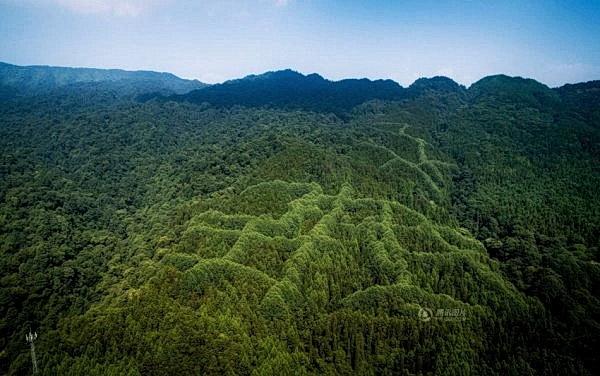 Загадочный узор обнаружен на горе в Китае