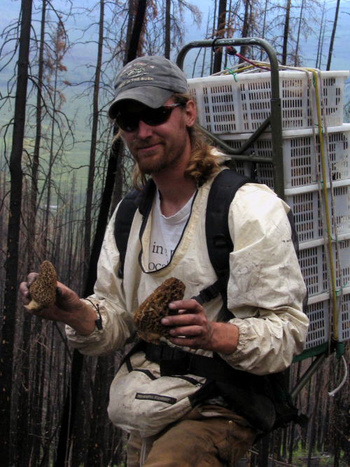 Сбор сморчков ― каждый раз новая история
