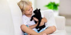 Жизнь с домашними животными защищает детей от аллергии