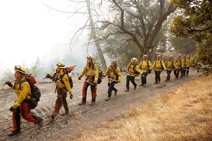 Исследование: Рост заболеваемости COVID-19 и смертельных случаев связан с дымом лесных пожаров