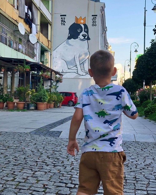 Грузия: собака прогоняет машины, когда дети переходят дорогу