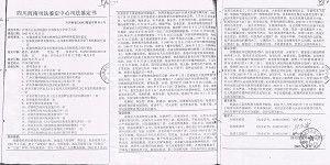 Копия свидетельства о психическом расстройстве Лян Цзиньхуэя. Фото: Великая Эпоха